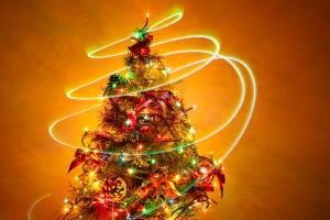 christmas-tree-6-1409596-m